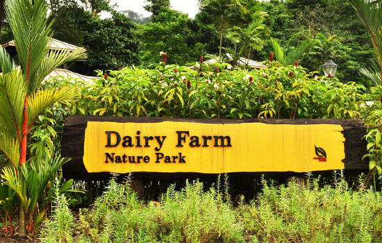Dairy Farm Nature Park